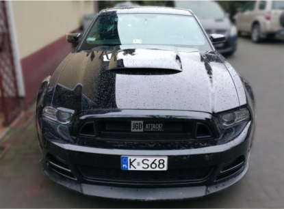 RTR Style Upper Grille (MUSTANG 13-14 GT, V6)